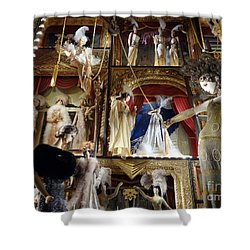 Worldly Women Shower Curtain by Ed Weidman