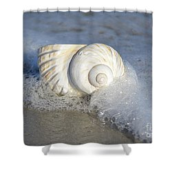 Worn By The Sea Shower Curtain by Kathy Baccari