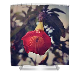 Worth It All Shower Curtain by Laurie Search