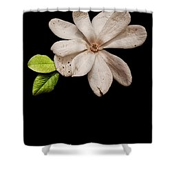 Wounds Cannot Hide The Beauty In You Shower Curtain