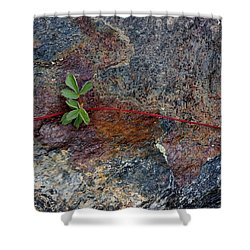 Wrapped Rock Shower Curtain