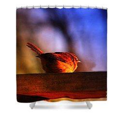 Wren In Early Morning's Light - Featured In In Newbies-nature Wildlife- Comfortable Art Groups Shower Curtain by EricaMaxine  Price