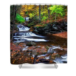 Shower Curtain featuring the photograph Wyandot Falls by Mark Papke