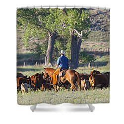 Wyoming Country Shower Curtain by Diane Bohna