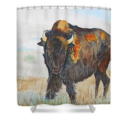 Wyoming - King Of The Prairie Shower Curtain