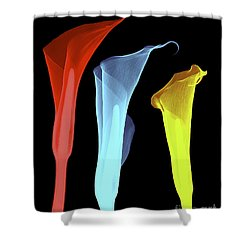 X-ray Of Three Lilies Shower Curtain by Bert Myers