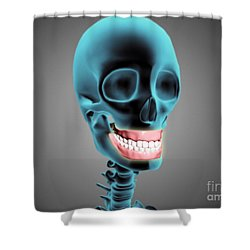 X-ray View Of Human Skeleton Showing Shower Curtain by Stocktrek Images