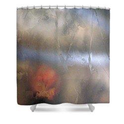 Xiv - Fair Realm Shower Curtain