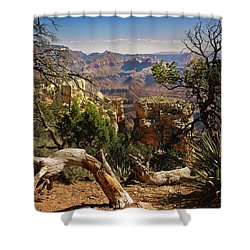 Shower Curtain featuring the photograph Yaki Point 4 The Grand Canyon by Bob and Nadine Johnston
