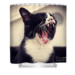 Yawn Like You Mean It Shower Curtain by Trish Mistric