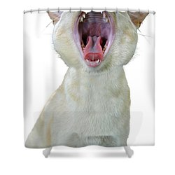 Yawning Cat Shower Curtain