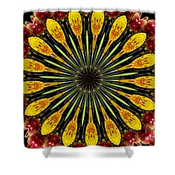 Yellow And Apricot Orchids Kaleidoscope Shower Curtain by Rose Santuci-Sofranko