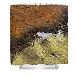 Yellow And Orange Converging Shower Curtain