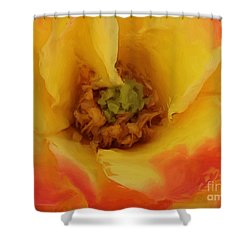 Yellow And Orange Rose Shower Curtain