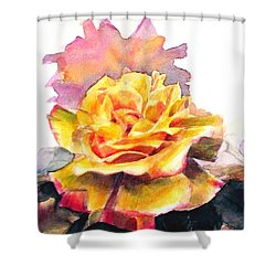 Shower Curtain featuring the painting Yellow Rose Fringed In Red by Greta Corens