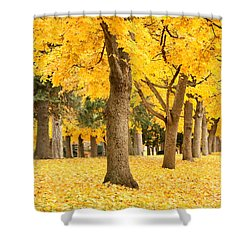 Yellow Autumn Wonderland Shower Curtain by Carol Groenen