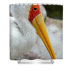 Yellow Billed Stork Shower Curtain by Richard Bryce and Family