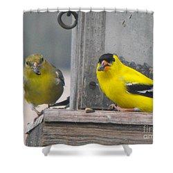 Yellow Birds Shower Curtain