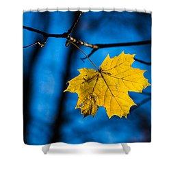 Yellow Blues - Featured 3 Shower Curtain by Alexander Senin