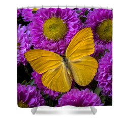 Yellow Butterfly And Pink Flowers Shower Curtain by Garry Gay