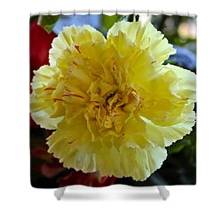 Yellow Carnation Delight Shower Curtain by Kurt Van Wagner