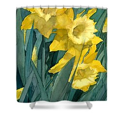 Shower Curtain featuring the painting Yellow Daffodils by Greta Corens