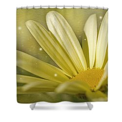 Yellow Daisy Shower Curtain by Ann Lauwers