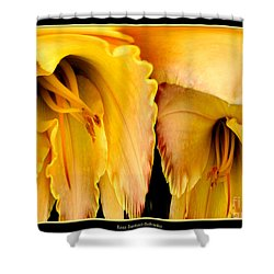 Yellow Daylily Abstract Shower Curtain by Rose Santuci-Sofranko