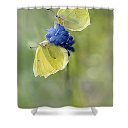 Yellow Duet Shower Curtain by Jaroslaw Blaminsky