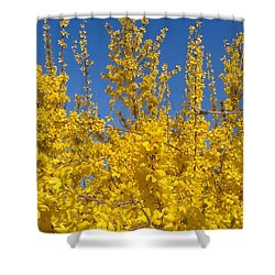 Yellow Explosion Shower Curtain