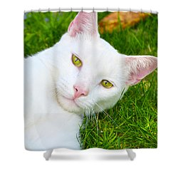 Yellow Eyes Shower Curtain by Tine Nordbred
