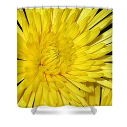 Yellow Flower Closeup Shower Curtain by Barbara Yearty