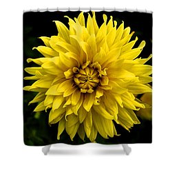 Yellow Flower Shower Curtain by Matt Harang