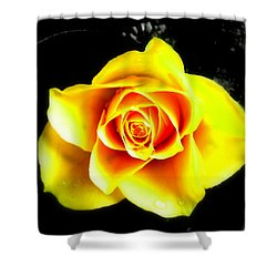 Yellow Flower On A Dark Background Shower Curtain