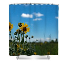 Yellow Flower On Blue Sky Shower Curtain