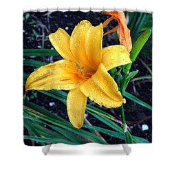 Yellow Flower Shower Curtain by Sergey Lukashin