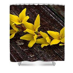 Yellow Forsythia Shower Curtain
