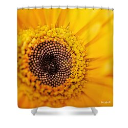 Yellow Gerbera Squared Shower Curtain by TK Goforth