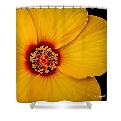 Yellow Hibuscus Too Squared Shower Curtain by TK Goforth