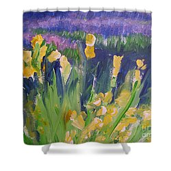 Yellow Iris Shower Curtain by Eric  Schiabor