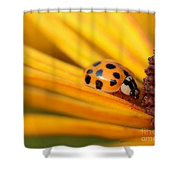 Yellow Lady - 1 Shower Curtain