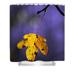 Yellow Leaf Shower Curtain