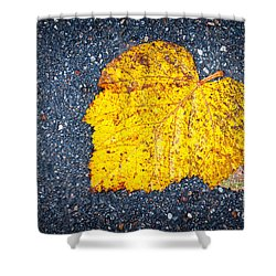 Yellow Leaf On Ground Shower Curtain by Silvia Ganora