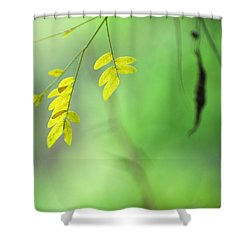 Yellow Leaves Shower Curtain by Guido Montanes Castillo
