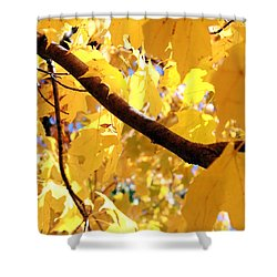 Yellow Leaves Shower Curtain by Valentino Visentini