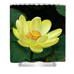 Yellow Lotus Shower Curtain
