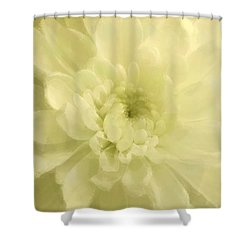 Yellow Mum Luminous Painted Blossom Shower Curtain