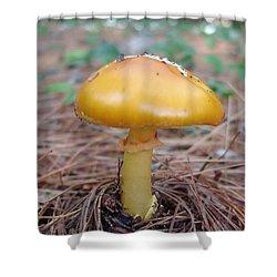 Yellow Mushroom Shower Curtain