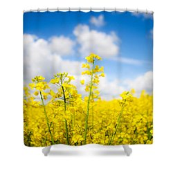 Yellow Mustard Field Shower Curtain