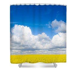 Yellow Mustard Fields Under A Deep Blue Sky Shower Curtain